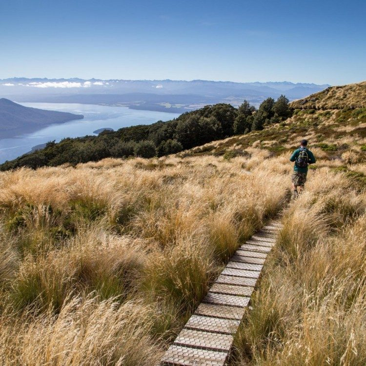 Explore around Luxmore Hut after your helicopter ride