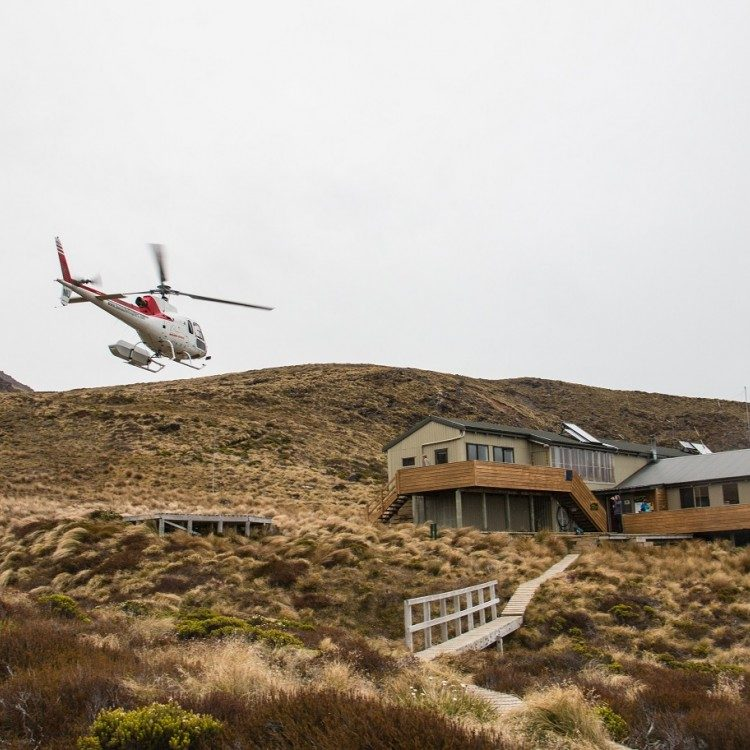 Fly to Luxmore Hut on the Kepler Great Walk to begin your experience