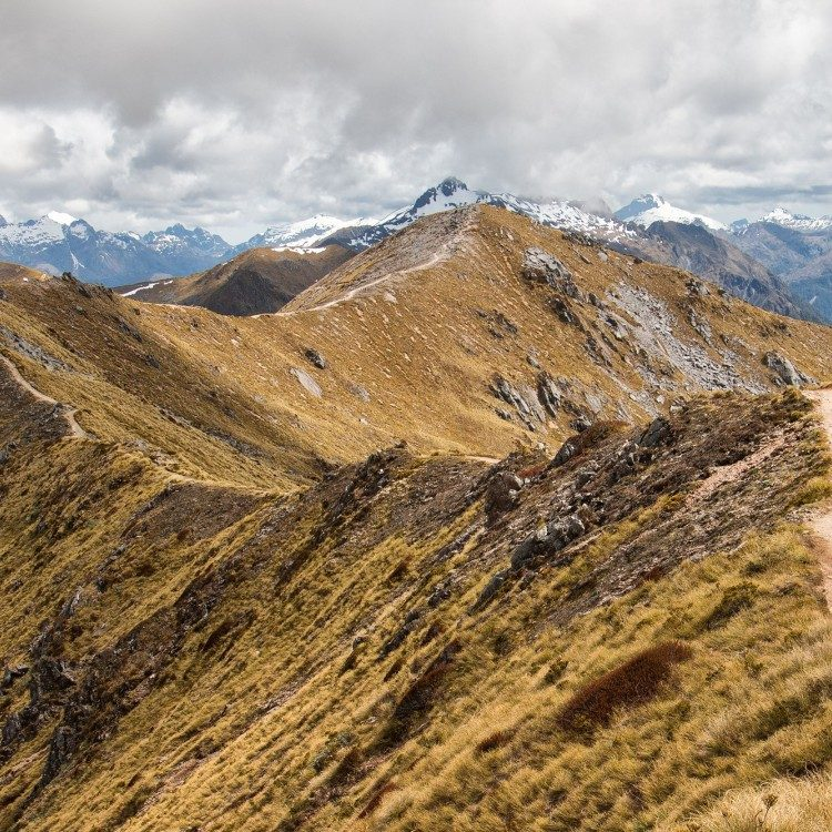 Follow the Kepler Track from above and spot the hikers below