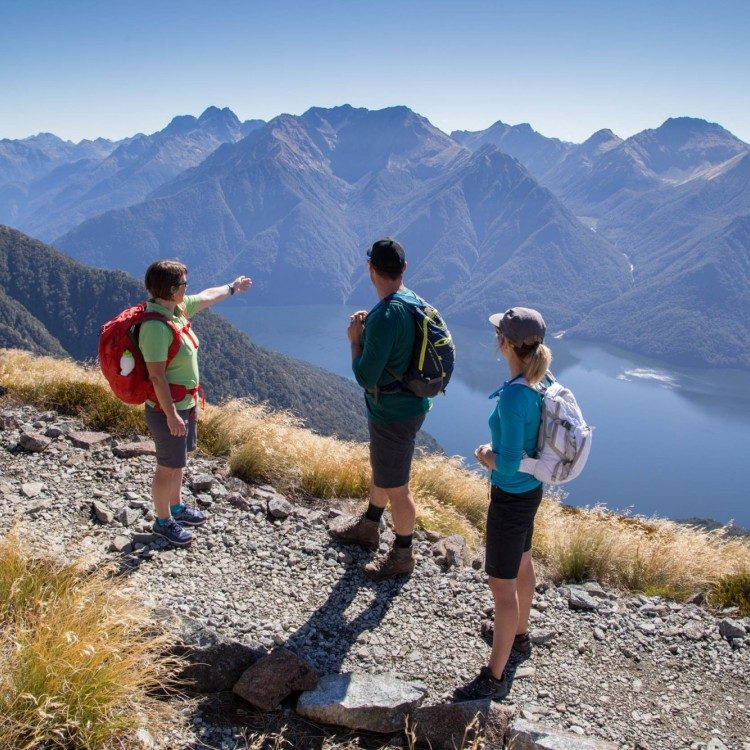 Your local guide can share conservation stories and explain areas of significance along the hike