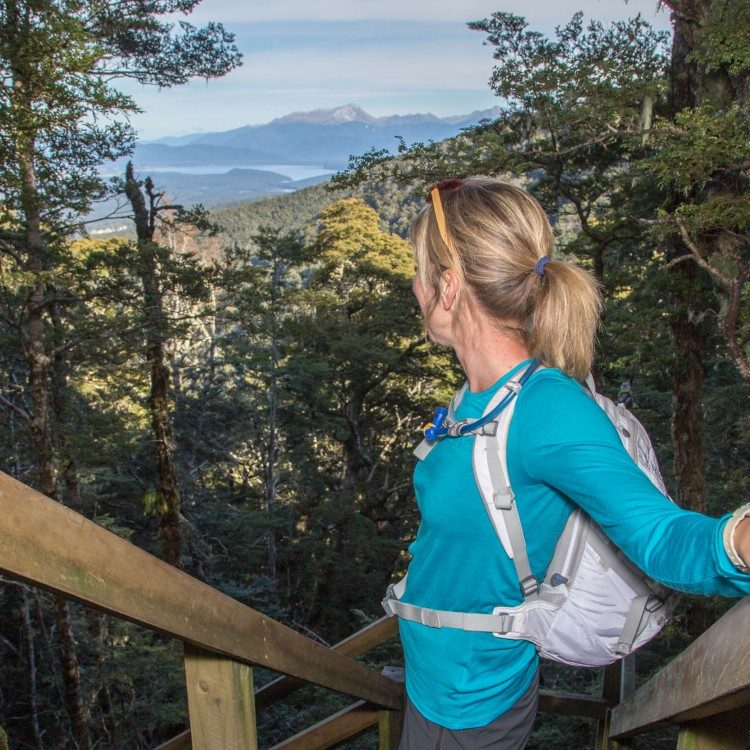 Descend through the limestone bluffs with view points to enjoy along the way