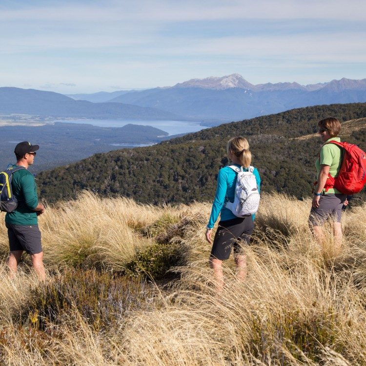Enjoy the views of Lake Manapouri and look down over south Fiordland a true wilderness area