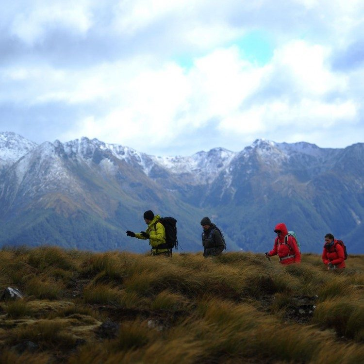 Tramp through the alpine area on the Kepler Track the views are incredible.