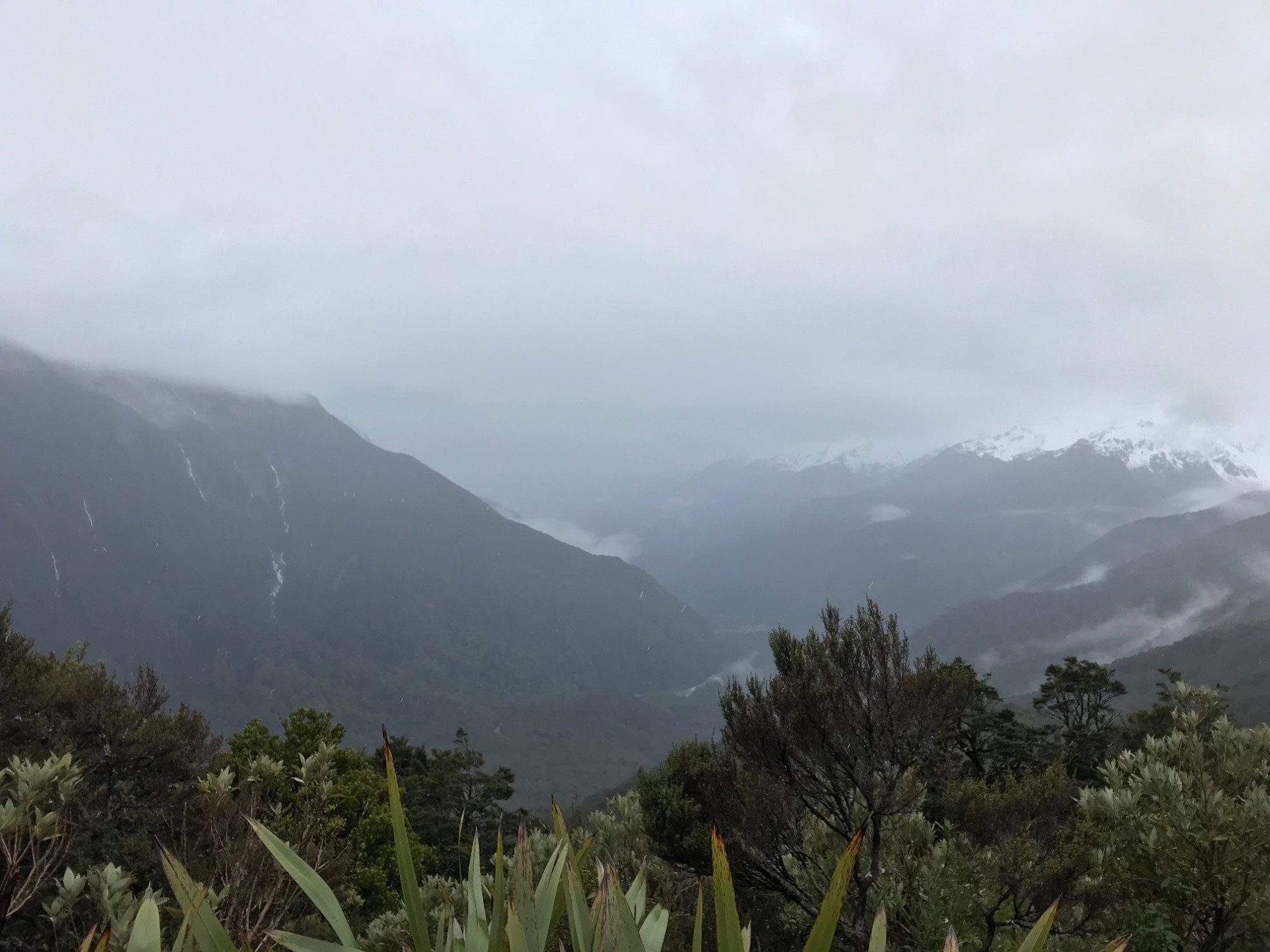 View of a forest covered valley with clouds on the mountains