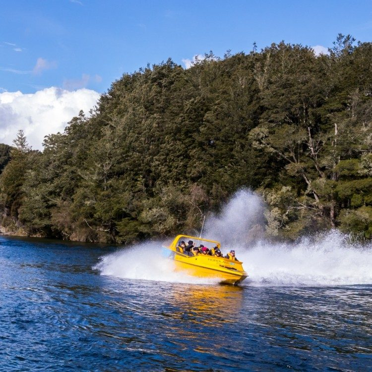 Experience a thrilling jet boat ride down the Waiau River