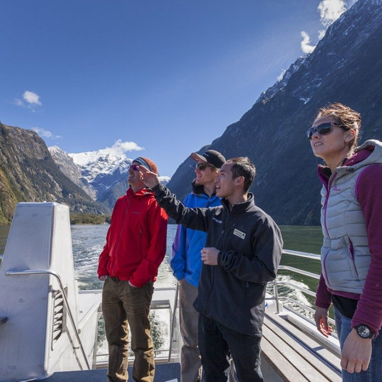 With a nature guide on board learn about Milford Sound as you cruise the fiord