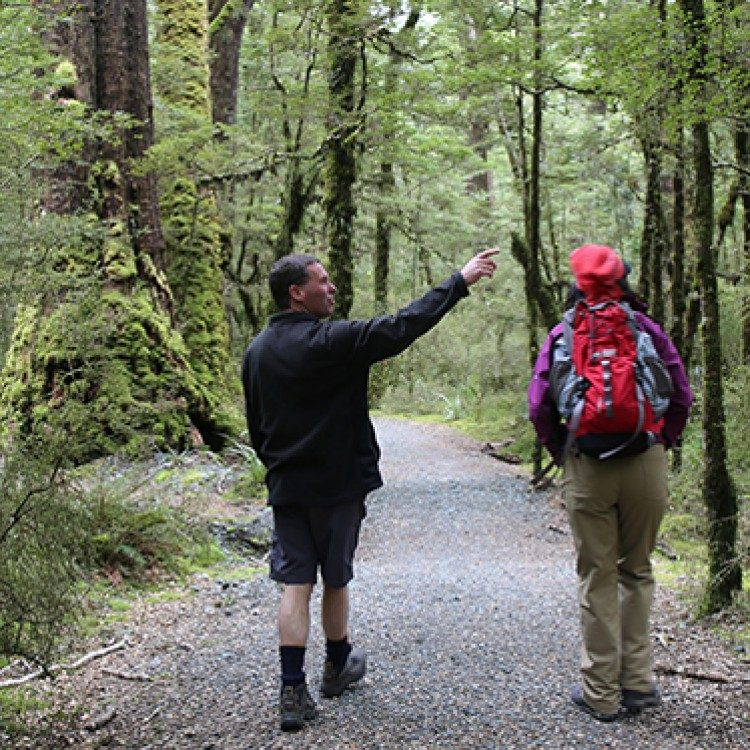 Explore Fiordland with a local,knowledgable New Zealand guide