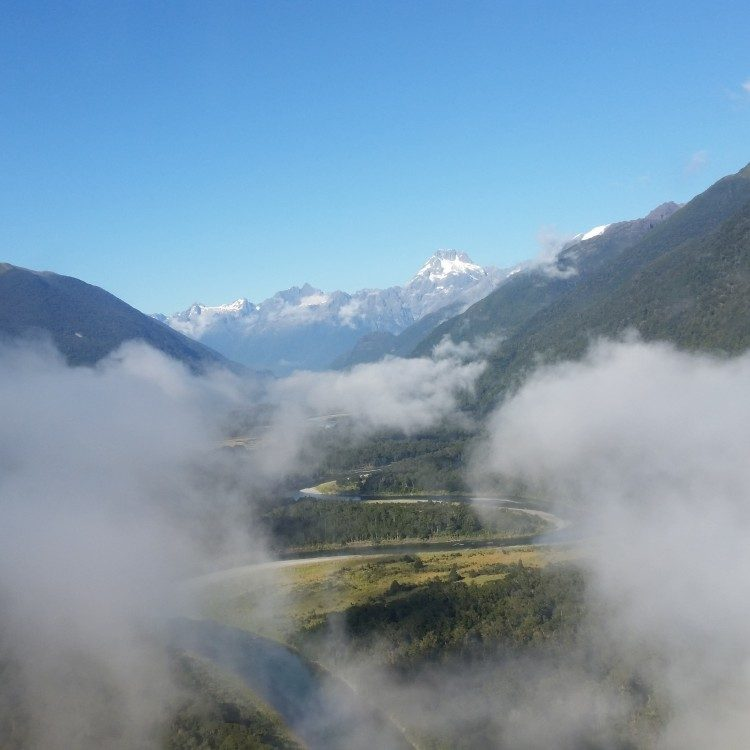 Flying into the Hollyford is like entering another world