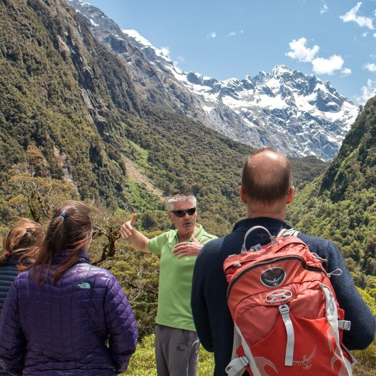 Your guide knows the best places to stop for great views along the Milford Road