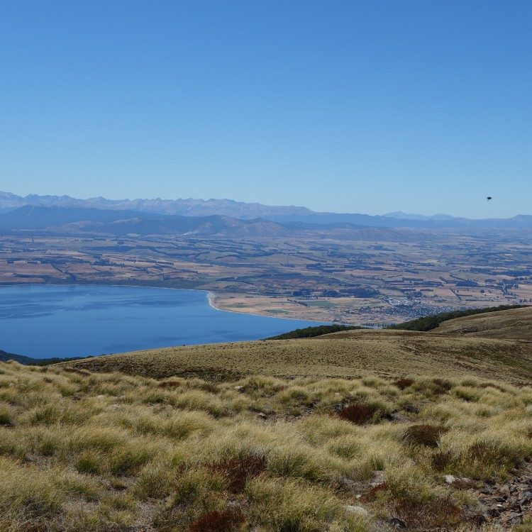 Looking over the Te Anau basin from Mt. Luxmore