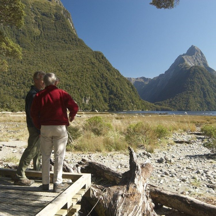Take an easy walk along the Milford foreshore on the Milford Sound tour.