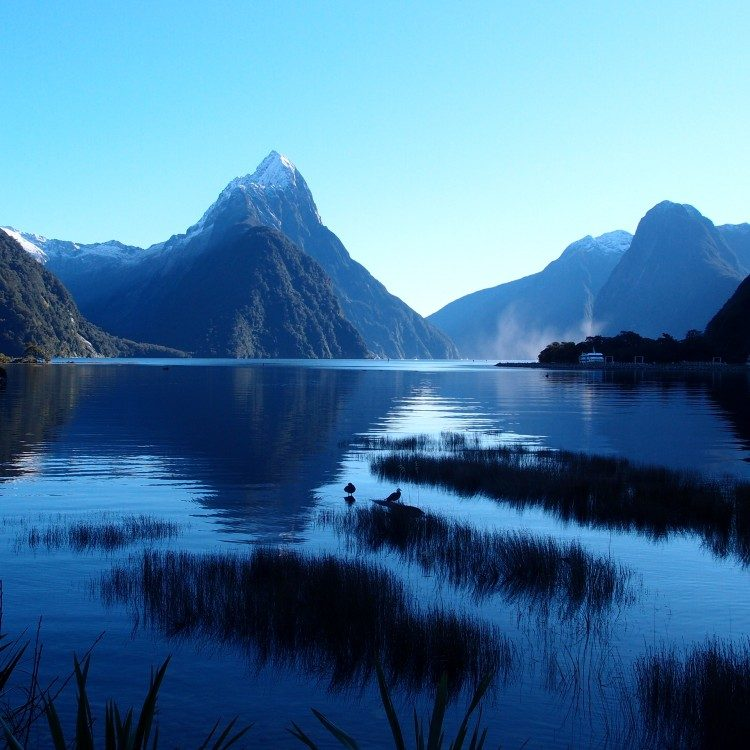 Blue skies often greet us at Milford Sound in winter