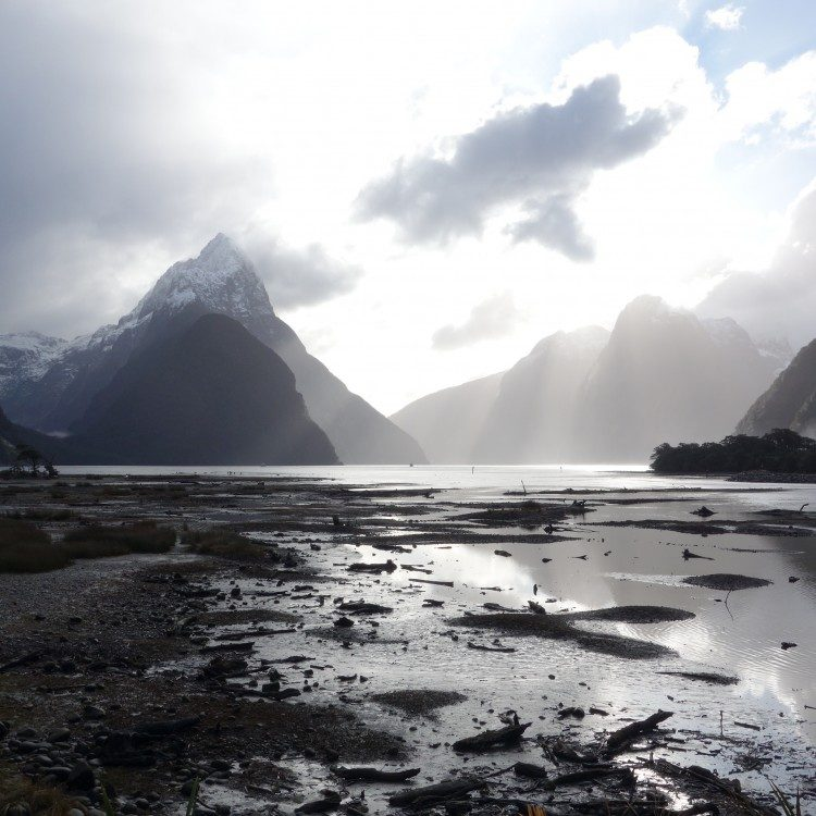 A view of Mitre Peak from the foreshore