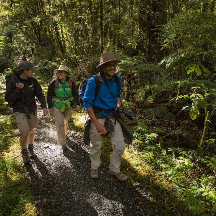 Let our friendly guides share their backyard with you on the Milford Track