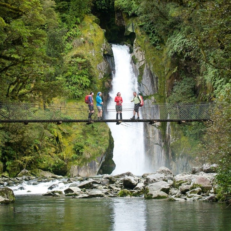 Giant Gate Falls on the Milford Track
