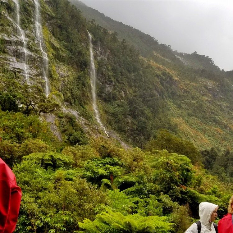 With the rain come the waterfalls on the Milford Track