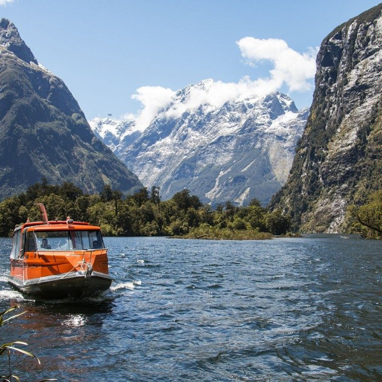 The water taxi will transport you to the Milford Track