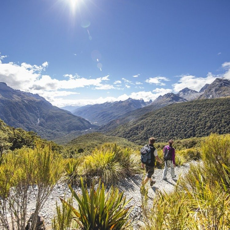 Overlooking the Hollyford Valley on the way up to Key Summit