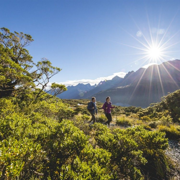 The Routeburn Track on a sunny afternoon, where would you rather be?