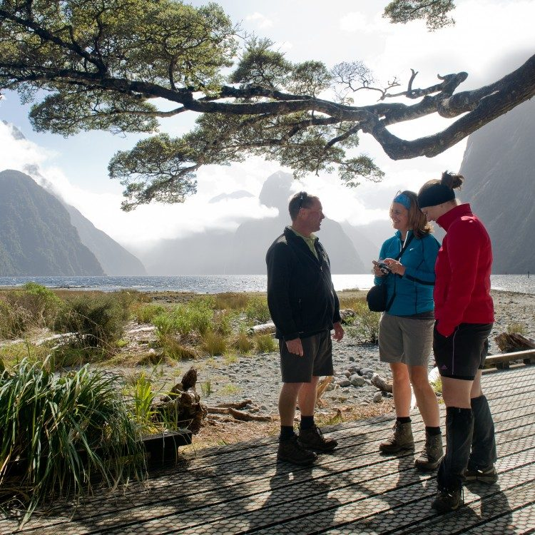 Milford Sound foreshore is great for Mitre Peak photos