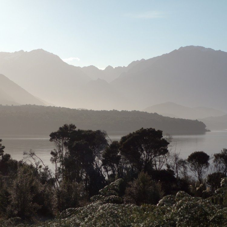 The Murchison Mountains, home of the Takahe