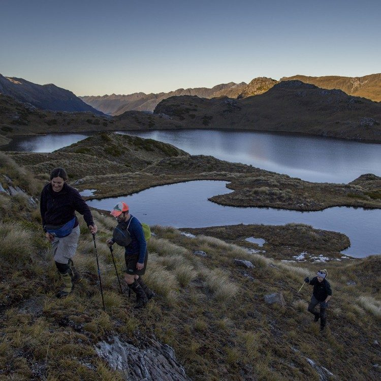 Exploring the Dusky track on a side trip to enjoy the best views possible