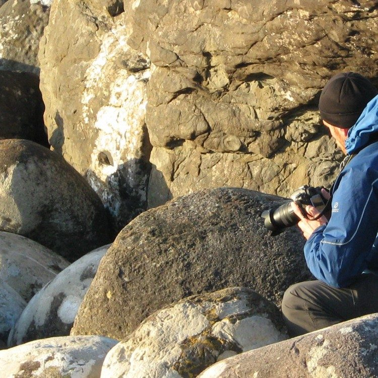 Getting up close and personal with a Fiordland Crested Penguin at Martins Bay