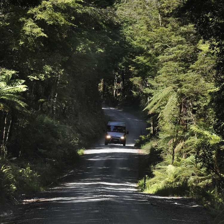 Travel down the Hollyford Road when you book your Hollyford Track transport with us.
